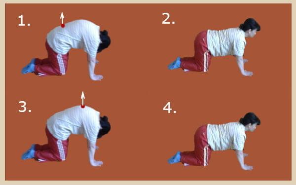 Лечебная гимнастика при плосковогнутой спине.